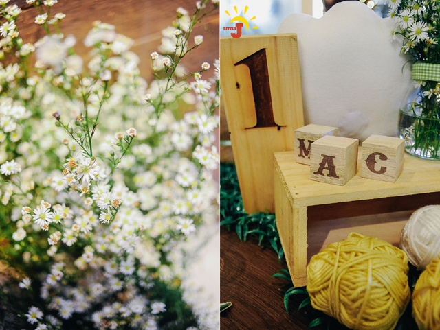 Little Little Sheep Themed Party - 12